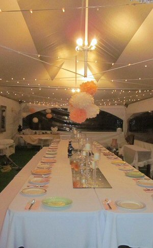 Mortons Event Hire