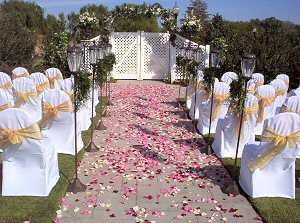 Wedding DecorationHire