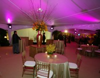 Decoration Marquee Lighting